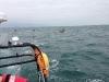 mid-channel-kayak-escort