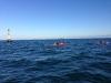 varne-cardinal-kayak